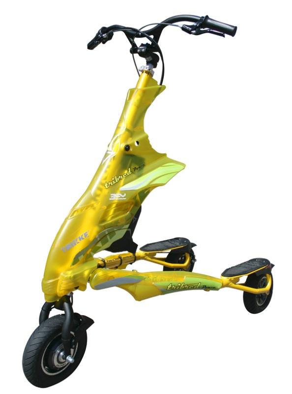 TrikkeuPT mit Elektromotor